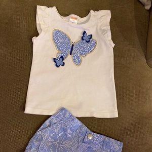 Gymboree Matching Sets - Gymboree Toddler girls outfit